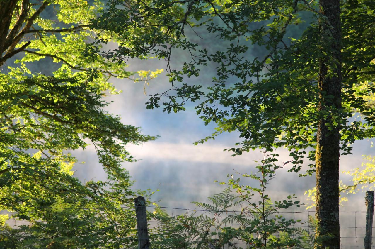 Vue du camping sur le lac au matin